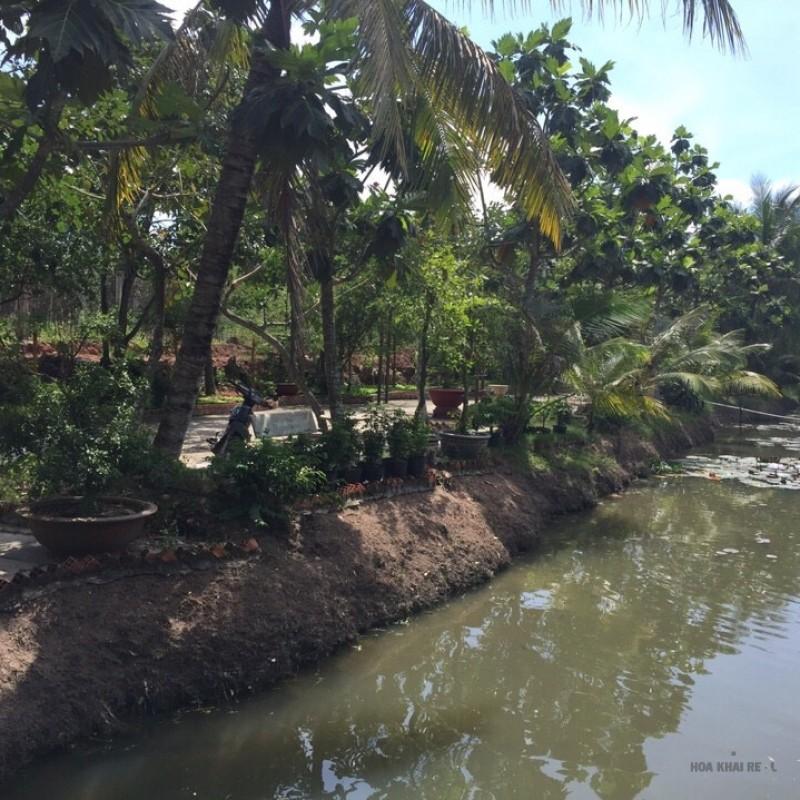Bán dự án KDL Sinh Thái ở phước hiệp, Củ Chi.